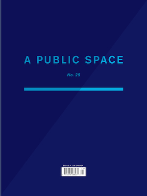 this is a public space winter 2017